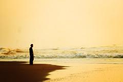 the young man and the sea (marie-ll) Tags: sea man beach netherlands scheveningen noordzee northsea breakers zuiderstrand