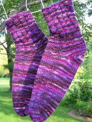 Astrid's Garter Rib Toe-Up Socks
