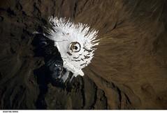 Mount Kilimanjaro, Tanzania (NASA, International Space Station Science, 04/03/07) (NASA's Marshall Space Flight Center) Tags: africa mountain tanzania volcano shira peak nasa glacier mount mountkilimanjaro crater summit uhuru moshi magma marangu mawenzi rebman riftvalley stratovolcano kibo whitemountain machame fumarole internationalspacestation uhurupeak fumaroles umbwe rongai reusch westernbreach furtwängler lemosho rebmann shiningmountain reuschcrater rebmanglacier stationscience crewearthobservation rebmannglacier furtwänglerglacier kaiserwilhelmspitze