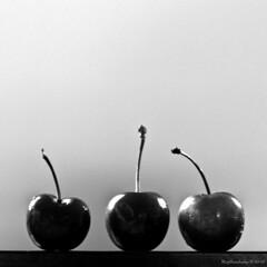 Stood-Up Trio (raisinsawdust - (aka: tennphoto)) Tags: light bw stilllife fruit 50mm three cherries nikon tennessee stems trio f18 2020 stoodup d90 nikond90
