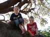Max and Clay in the prayer tree