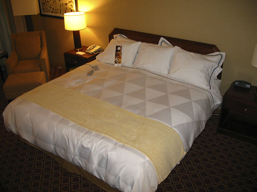 Radisson Chicago O'Hare - This is a bed!!!