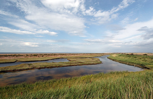 Wade Marsh, Birchington