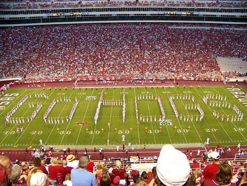 Go Hogs Spell-Out