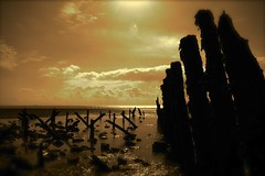 a glimpse of the past (alternativefocus) Tags: beach sepia sussex pentax rye lowwater winchelsea groins pentaxk10d excapture alternativefocus