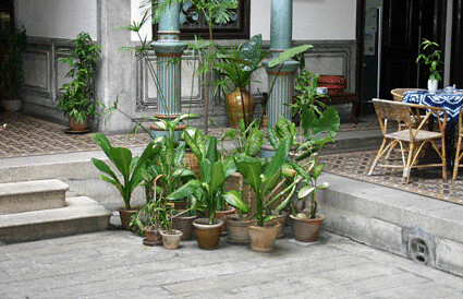 Cheong Fatt Tze - Courtyard Well