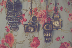 Day 356: Adornments (Cerisse ) Tags: camera clock floral robot nikon owl accessories tones necklaces d60 project365