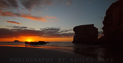 Take a last look at the sun (Ashley Daws) Tags: new sky sun set zealand nz sunst colony gannet muriwai