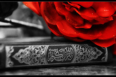 The Holy Quran (M.A.J Photography) Tags: muslim islam faith holy fantasy license islamic quraan quran maj  koran      theholyquran