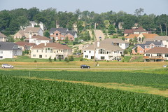 About farms and suburbs (Mazda6 (Tor)) Tags: road houses green cars field wisconsin corn farm farming m landing madison crops suburb westside estates hawks mcmansion mirabel