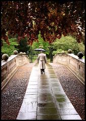 Cambridge umbrellas: Traditional black (Sir Cam) Tags: bridge cambridge england wet rain umbrella rivercam clarecollege supershot fiveflickrfavs