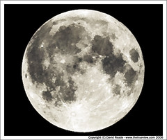 Harvest Moon (C) Sept 2006
