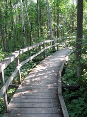 Curved Path (The Other Dan) Tags: camping macgregor portelgin