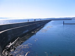 Ogden Point Breakwater