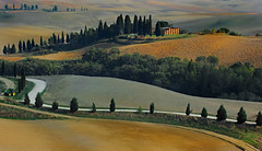 Rural view (Anna Pagnacco) Tags: italy bravo fivestarsgallery annapagnacco shieldofexcellencegroup landscapetuscanyorchavalleycypresses world100f