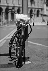 Bicicletta solitaria