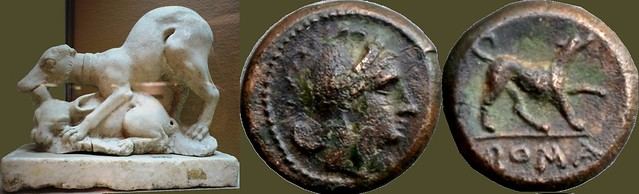 26/4 tiny bronze coin from 230BC with a charming Dog, and sculpture of a Dog attacking a rabbit from the Villa Regina, a small Vineyard property at Boscoreale