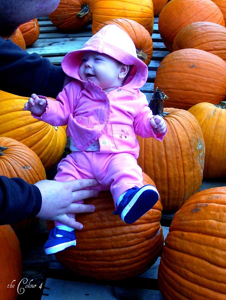 Leah pumpkin