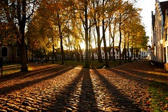 Autumn Shadows, Brugge (Bruges), Belgium (Sait Izmit) Tags: old travel autumn shadow sun tree nikon europe belgium brugge bruges d60 againstthesun beguinage vlanderen flickraward afhht lpautumn2