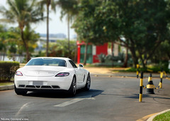 SLS ///AMG (nick ^^) Tags: park winter brazil flores colour verde car branco brasil lago mercedes benz df do br nicolas carro cor fluor sul sls giovanni amg ponto barsilia