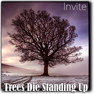 TREES DIE STANDING UP