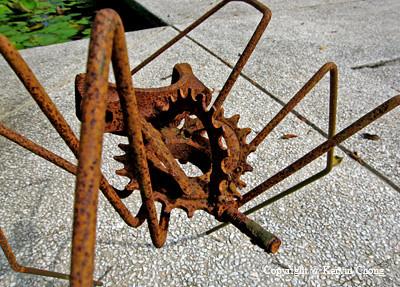 Rust-Spider