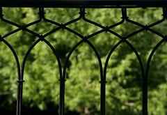 green, behind (Dreamer7112) Tags: park summer green 20d fence schweiz switzerland europe suisse suiza canon20d zurich canoneos20d zrich svizzera zuerich eos20d zurigo blueribbonwinner