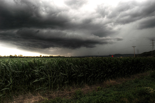 Indiana Thunderstorm
