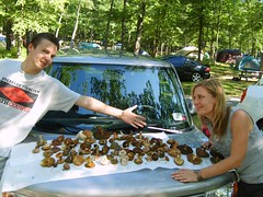 wmahahaha. i love them car toasted shrooms (NinaPasadena) Tags: statepark lake swimming mushrooms jeni hiking upstate gina bearmountain corwin harriman