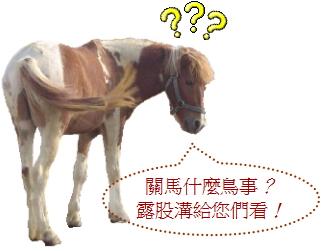 無限台南-不關馬事