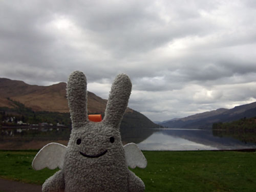 Angel Bunny at Loch Long