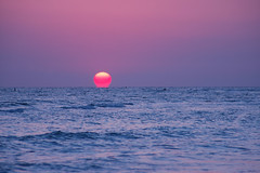 Tonights Sunset 5-12-10 (duane.schoon) Tags: sunset orange sun gulfofmexico set florida lidobeach duanesphotos bigorangeballoffire
