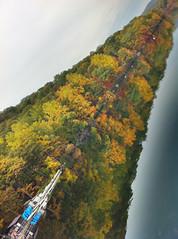 Tree. (saebaryo) Tags: trees lake reflection fall apple forest bearmountain foliage hdr iphone twitter hessianlake iphone4 prohdr echofon