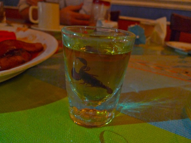 Today's hangover is sponsored by @thejgold, @oobriciaoo, and my new mezcal-swimming pal, Pinchy: