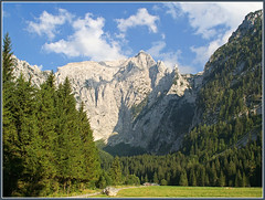 Scharitzkehl - at the end of the valley (rotraud_71 away again ~) Tags: trees sky mountain clouds forest germany way bavaria berchtesgaden rocks europe cows stones alp mountainpasture berchtesgadenerland nationalparkberchtesgaden hohergll bavarianlimestonealps impressedbeauty westwand vorderbrand