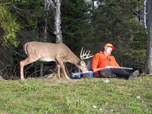 funny deer pictures. funny deer hunting in Florida