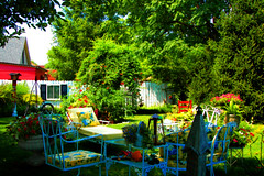 Indiana backyard (HyeStyleShots thank you to a very generous friend ) Tags: flowers red fab plants green nature fence garden backyard indiana shutters patiofurniture hyeclass
