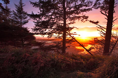 A Day's Crowning Moment (Jason Sampson) Tags: water sunsets beaches olympic sunrises forests olympicnatlpark