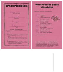 Waterbabies report card