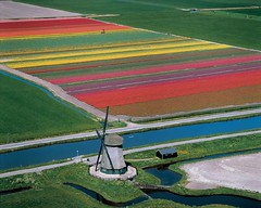 Discover Europe in 90 days (2/90) (skippi1234) Tags: holland europe nederland 1506