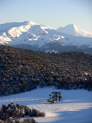 Sierra Nevada y Volcn Llaima (Mono Andes) Tags: chile winter mountain tree trekking landscape volcano backpacking bosque rbol andes invierno araucaria montaa sierranevada sigurros cordillera esqu volcn araucariaceae chilecentral cordilleradelosandes regindelaaraucana volcnllaima