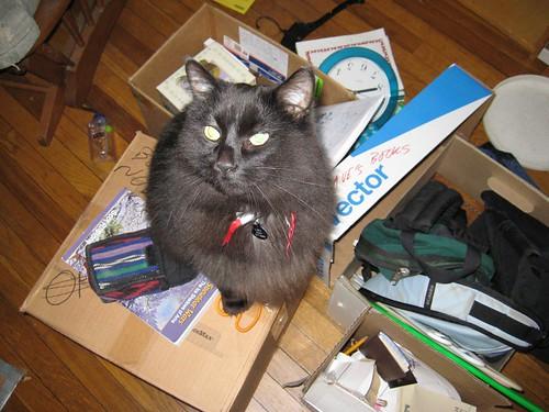 Loki unpacking