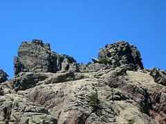 Arrivée du Couloir des Chasseurs à la Croix de Leccia: double sommet de Punta Bigornu