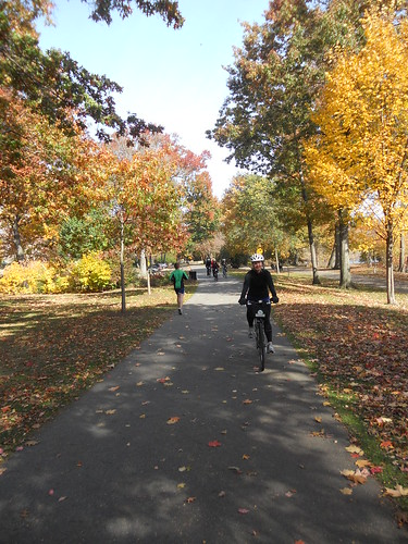 Boston's Emerald Necklace and Fall Foliage Guide