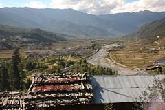Bhutan-11