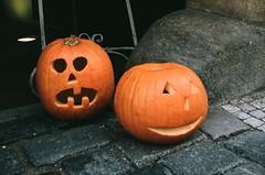 Pumpkin (Benisfree) Tags: halloween 35mm pumpkin fuji superia yashica citrouille yashica35gt yashicaelectro35gt