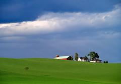 Farmland #1 (Nannestad) (Krogen) Tags: norway landscape norge 110 norwegen olympus noruega agriculture scandinavia akershus romerike krogen landskap noorwegen noreg skandinavia nannestad e400 jordbruk onlythebestare ukkestad