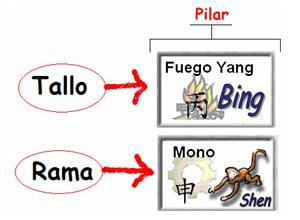 4 pilares