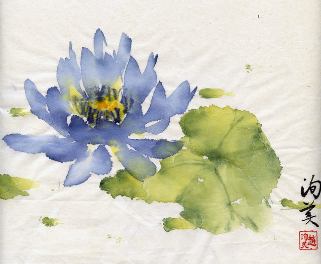 Lily (Blue Lotus) by Amherst Town Library