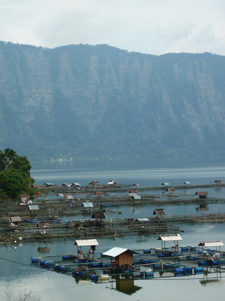 Sumatra-Lac Maninjau (132)